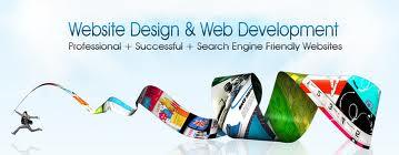 india web design
