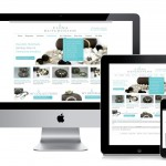 Responsive Website Design Ideal Browsing Experience