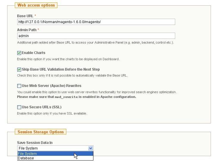 Magento Web access Options