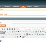 All about the Widgets in Magento
