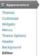 Go to the menu Appearance -> Editor