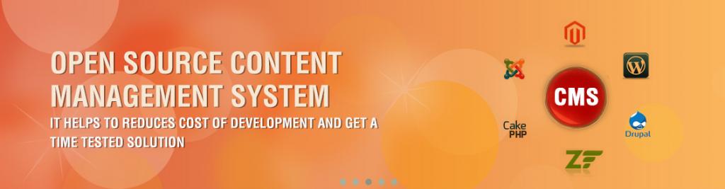 Website Design-Development Company India-Web Developers India