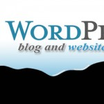 The Speed issue – WordPress Website