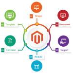 All need to know about Magento Widgets