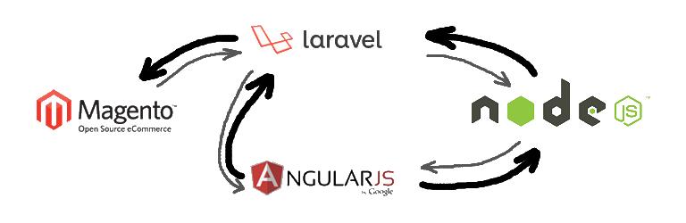eCommerce development with Magento - using Angular JS