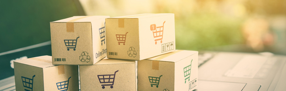 eCommerce web developers in India